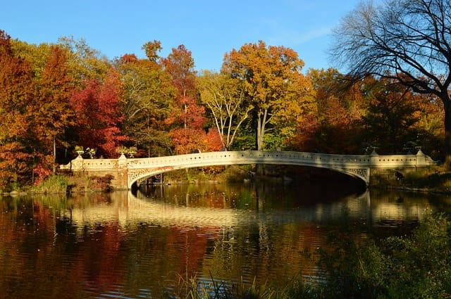 Automne-a-new-york