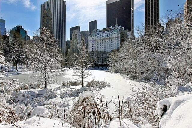 hiver-a-new-york