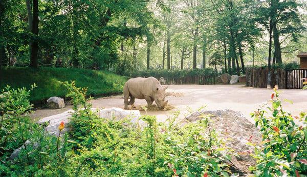 Le-Zoo-de-Lille