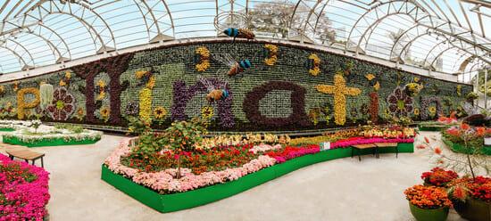 Royal-Botanic-Garden-Sydney