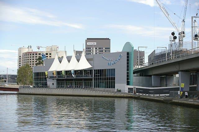 SEA-LIFE-Melbourne-Aquarium