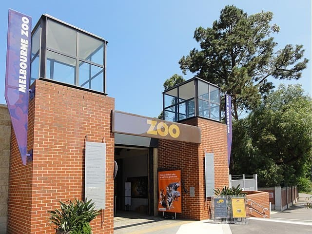 Zoo-de-Melbourne