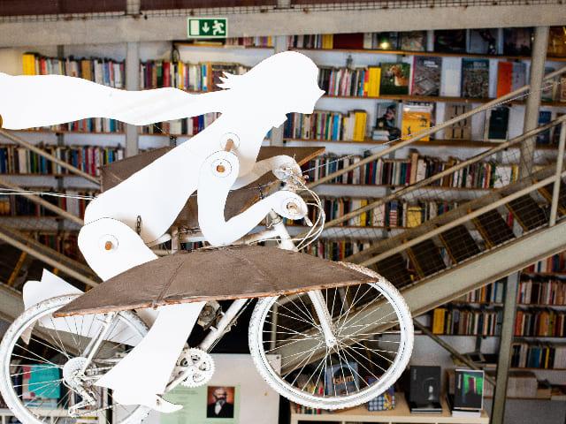 Visiter-une-librairie